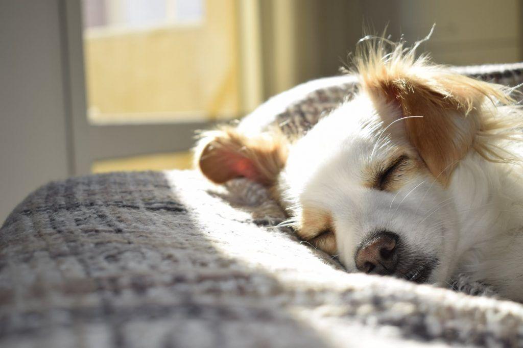 nopeasti nukahtaminen