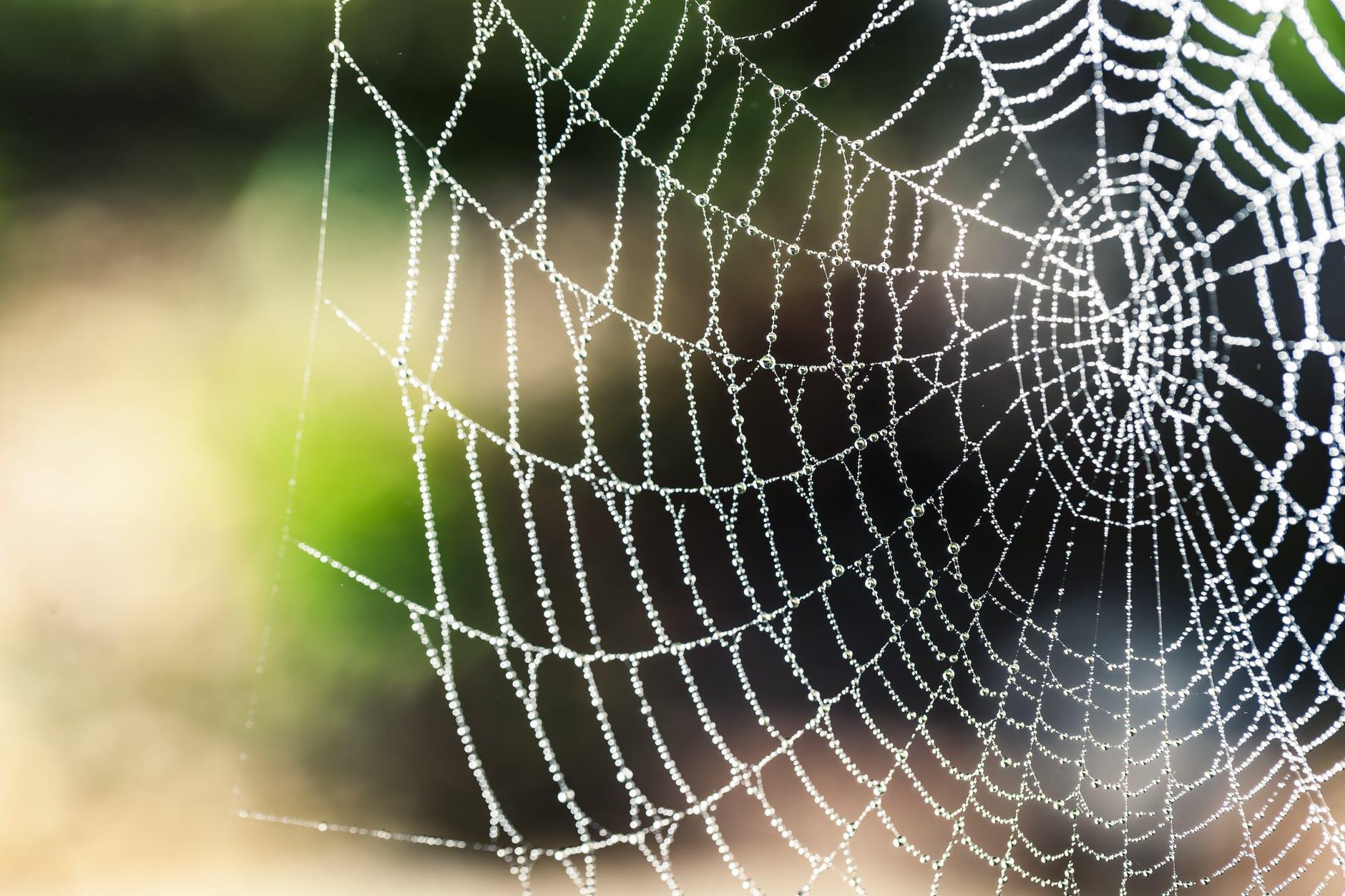 Aktiivisen oppimisen sudenkuopat: 4 väärinymmärrystä ja miten välttää ne